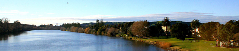 Wairoa River New Zealand view on the way to our office